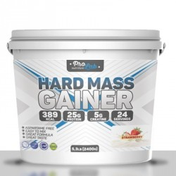 Hard mass gainer 2400 г