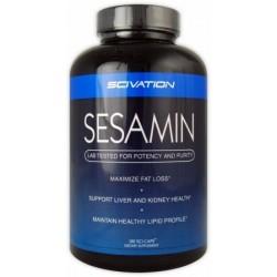 Sesamin - 180 Sci-Caps