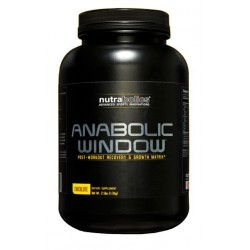 Anabolic Window 1130 г