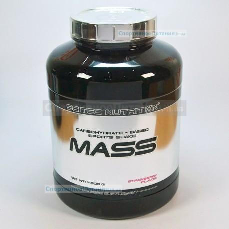 Mass 4500 г