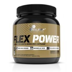 Flex Power 504 г