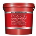 100% Whey Protein Professional 5000 г