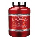 100% Whey Protein Professional LS 2350 г