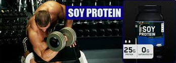 100% Soy Protein 909