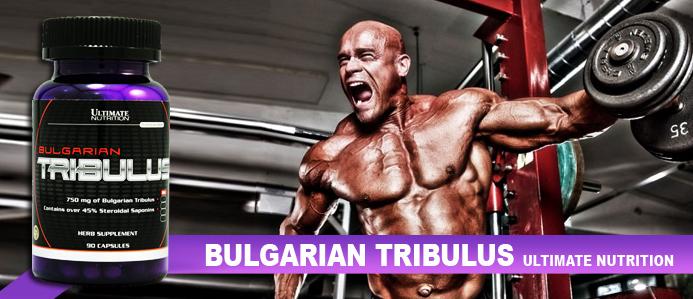 Bulgarian Tribulus 90 капс